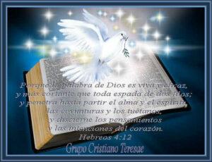 Imágenes Reflexiones de la Biblia (3)