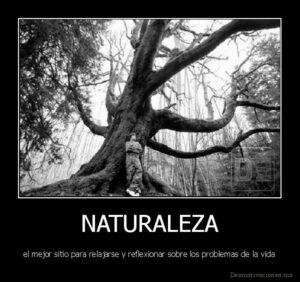 Imágenes de Reflexión sobre la Naturaleza (5)