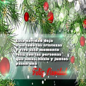 Imágenes de Reflexión en Navidad (4)