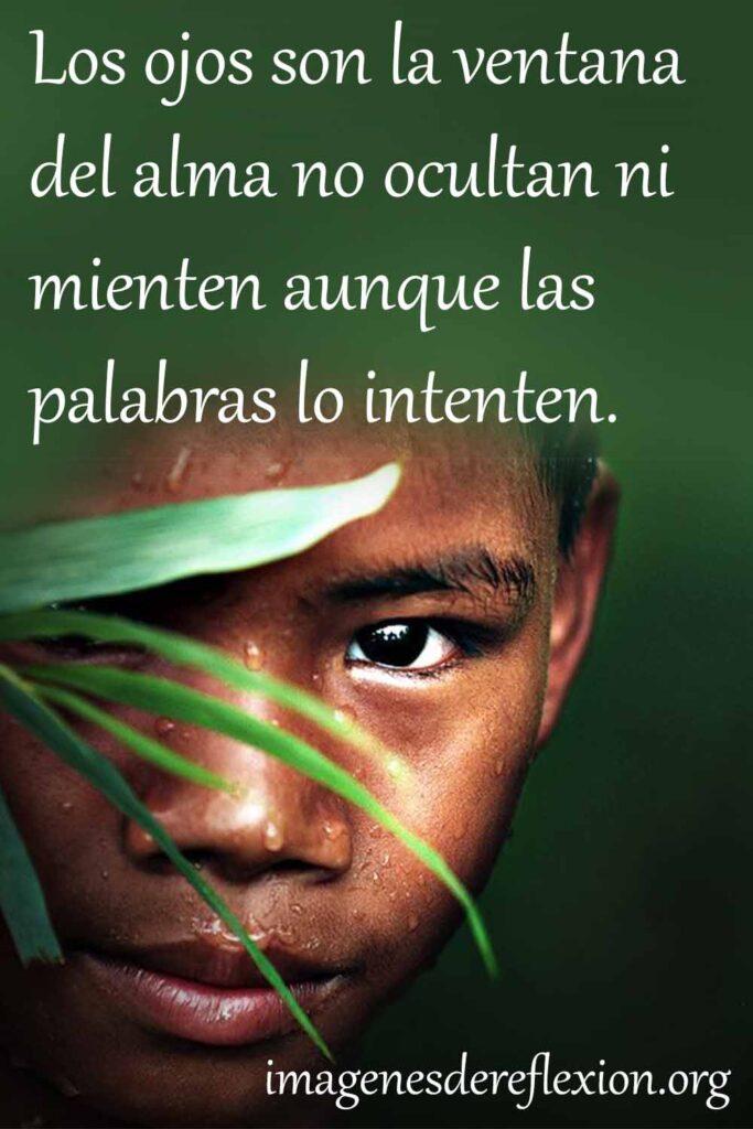 Los ojos son la ventana del alma no ocultan ni mienten aunque las palabras lo intenten.
