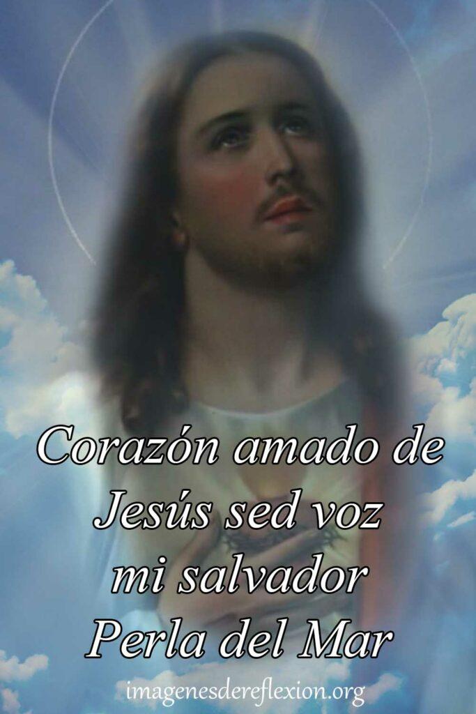 Corazón amado de Jesús sed de voz mi salvador Perla del Mar.