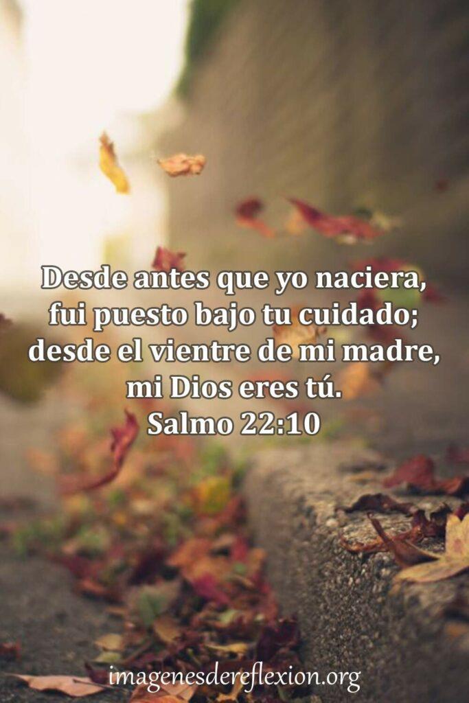 Desde antes que yo naciera, fui puesto bajo tu cuidado; desde el vientre de mi madre, mi Dios eres tu.Salmo 22:10